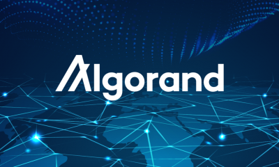 Algorand is the best place to create and launch NFTs – Paul Riegie, Algo's Chief Product Officer
